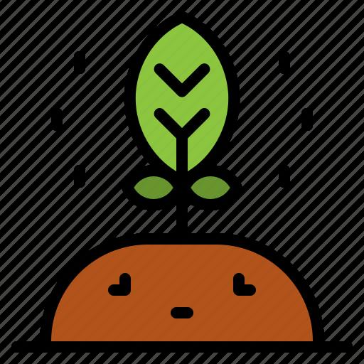 farm, garden, gardening, plant, seedling, seeds icon