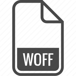 document, file, format, type, woff icon