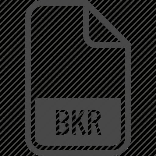 bkr, document, file, format, type icon