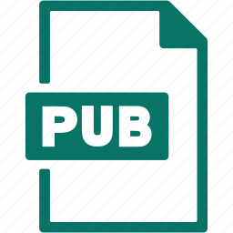 document, extension, file, format, pub icon