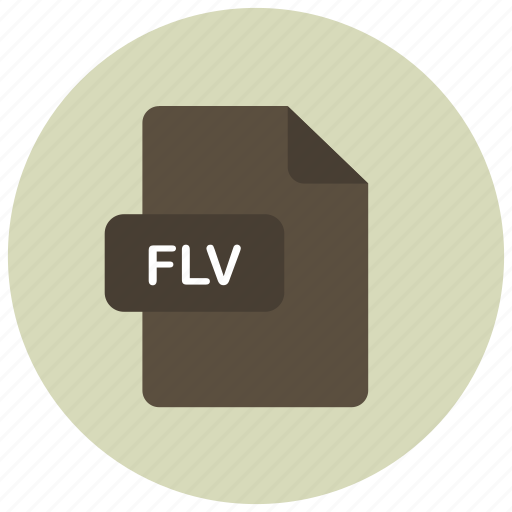 extension, file, flv, type icon