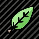 environment, fresh, leaf, nature, organic