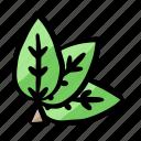 environment, fresh, leaves, nature, organic icon