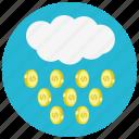 coin, finance, money, raining