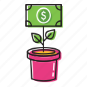 money plant, money tree icon