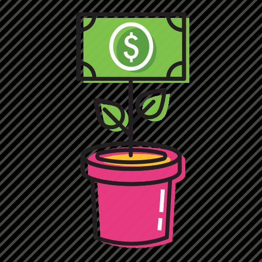 money plant, money tree icon