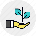 branch, business, company, growth, plant, prosperity, rise