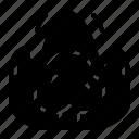 fire, risk, tree icon