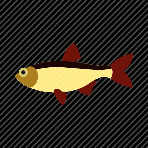 animal, ocean, salmon, sea, tropical, underwater, water icon