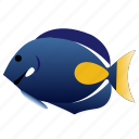 achilles, fish, pet, tang icon