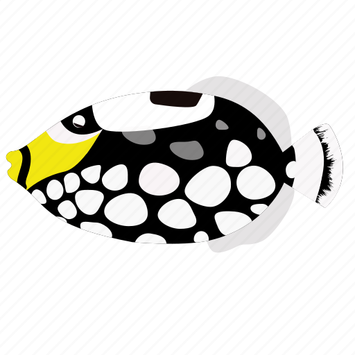clown, fish, pet, triggerfish icon