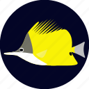 butterflyfish, fish, forceps, pet icon