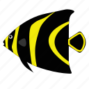angelfish, fish, french, pet icon