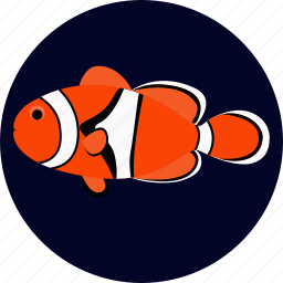 clownffish, fish, percula, pet icon