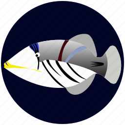 fish, pet, picassofish icon