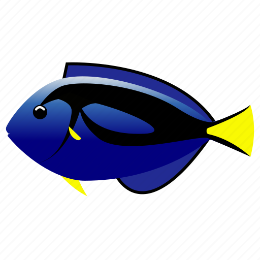 fish, pet, regal, tang icon
