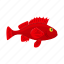 aggressive, aquatic, cartoon, fish, red, sea, tropical icon