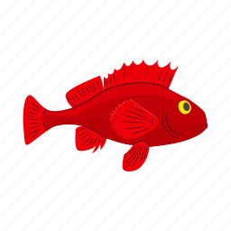 aggressive, aquatic, cartoon, fish, red, sea, tropical icon
