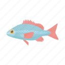 animal, carp, cartoon, fish, fishing, nature, water icon
