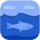 beluga, fish, fishing, under, water icon