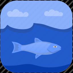 beluga, fish, fishing, under, water icon