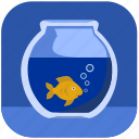 aquarium, fish, gold, home