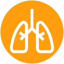 anatomy, body, health, lung, lung cancer, lungs, organ icon
