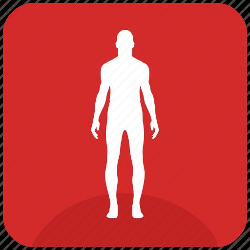 body, figure, fit, fitness, slim icon