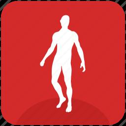 body, fit, man, slim, sportsman icon
