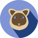 animal, cat, cc, cute, pet icon