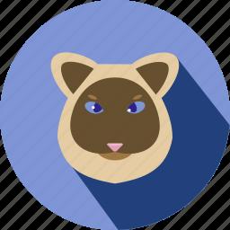 animal, cat, cc, cute, pet icon