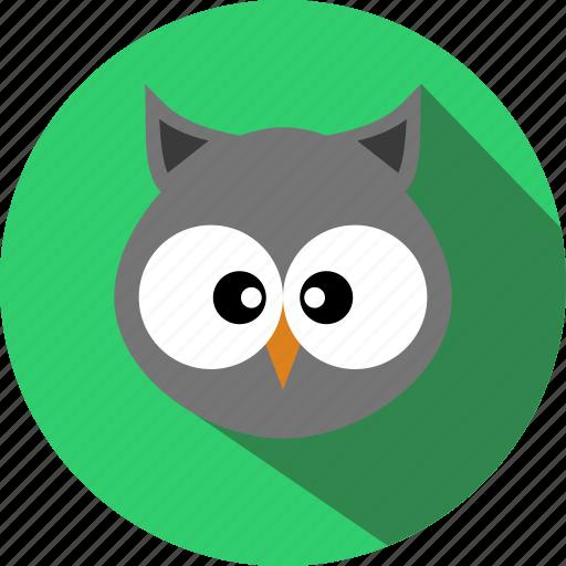 animal, animals, bird, cc, cute, owl, zoo icon