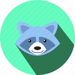 animal, cc, face, racoon, smile, wild, zoo icon