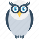 bird, knowledge, owl, owl sage, wisdom icon
