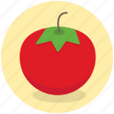 food, healthy, ketchup, tomato, vegetable icon