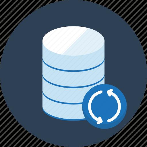 database, seo, sync, synchronous, web icon