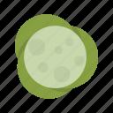 cabbage, cauliflower, vegetable icon