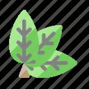 nature, environment, organic, fresh, leaves icon