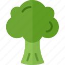 broccoli, cooking, food, meal, snack icon