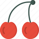 cherries, cooking, food, meal, snack icon