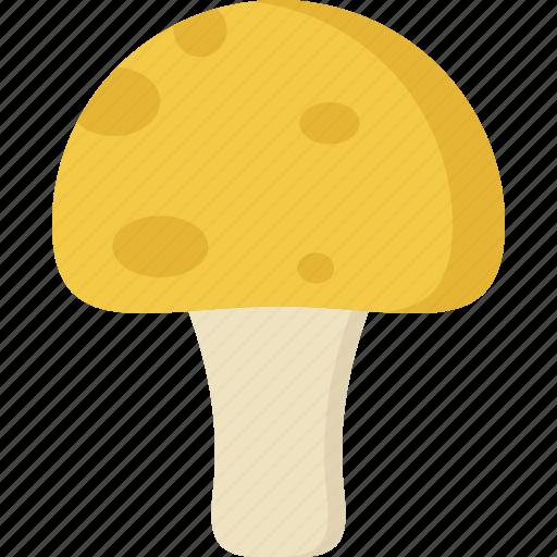 cooking, food, meal, mushroom, snack icon