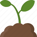 education, learn, plant, school, science icon