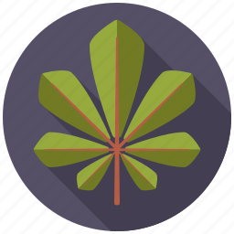 botany, chestnut, leaf, nature, plant, tree icon