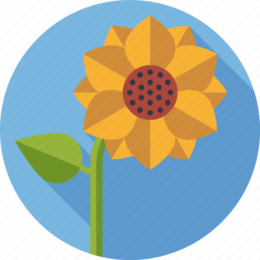 Bloom, blossom, environment, flower, nature, plant, sunflower icon - Download on Iconfinder