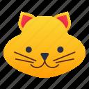 cat, face, kitten, pet