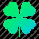 clover, luck, patrick, plant
