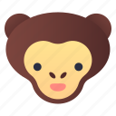 animal, jungle, macaque, monkey