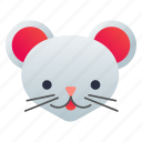 animal, face, mouse, rodent