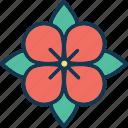 bellflower, blossom, bluebell, bluebell flower icon