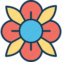 anemone flower, bloom, flower, natural icon